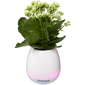 Flower Pot Bluetooth колонка